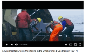 Environmental Effects Monitoring Online Video