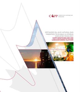 Cover page of the Newfoundland and Labrador Energy Platform 2021